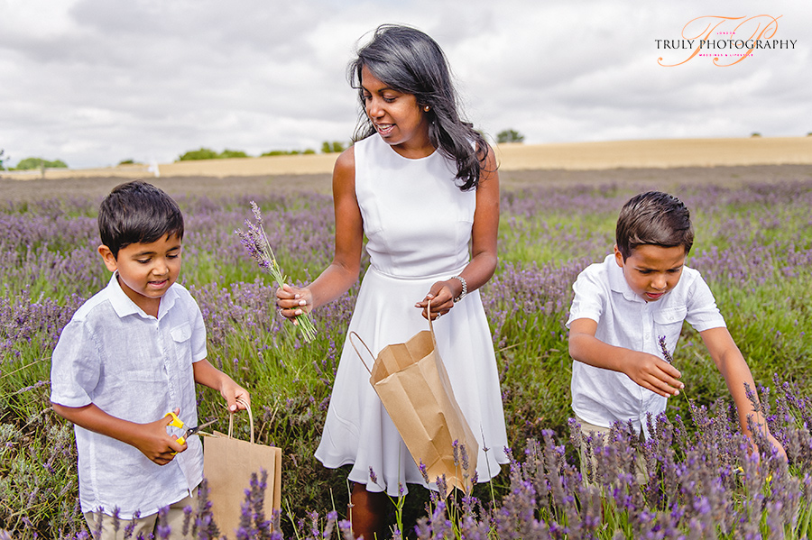 Hitchin Lavender Family Photo Shoot